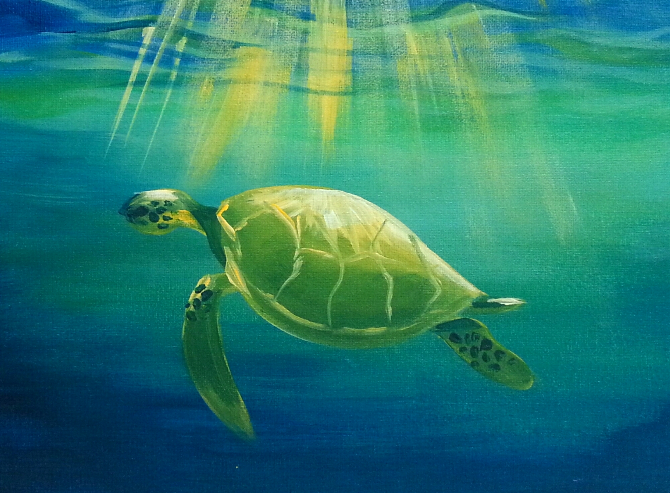 Turtle Acrylic Paintings