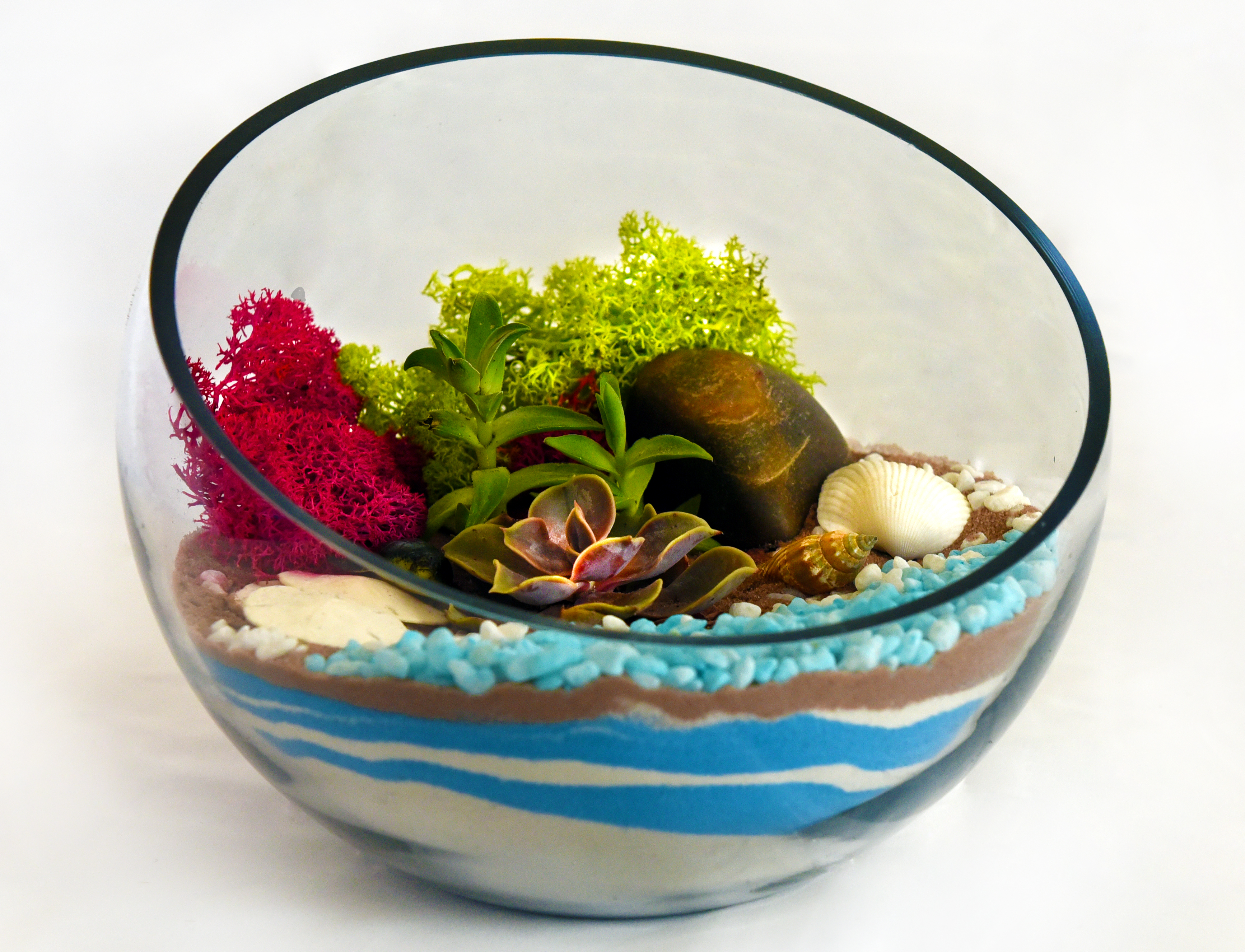 New Sloped Bowl Terrarium At Ram Brewery Bridgepark Dublin At Ram