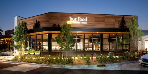 True Food Kitchen Design wine and sip at true food kitchen | paint nite