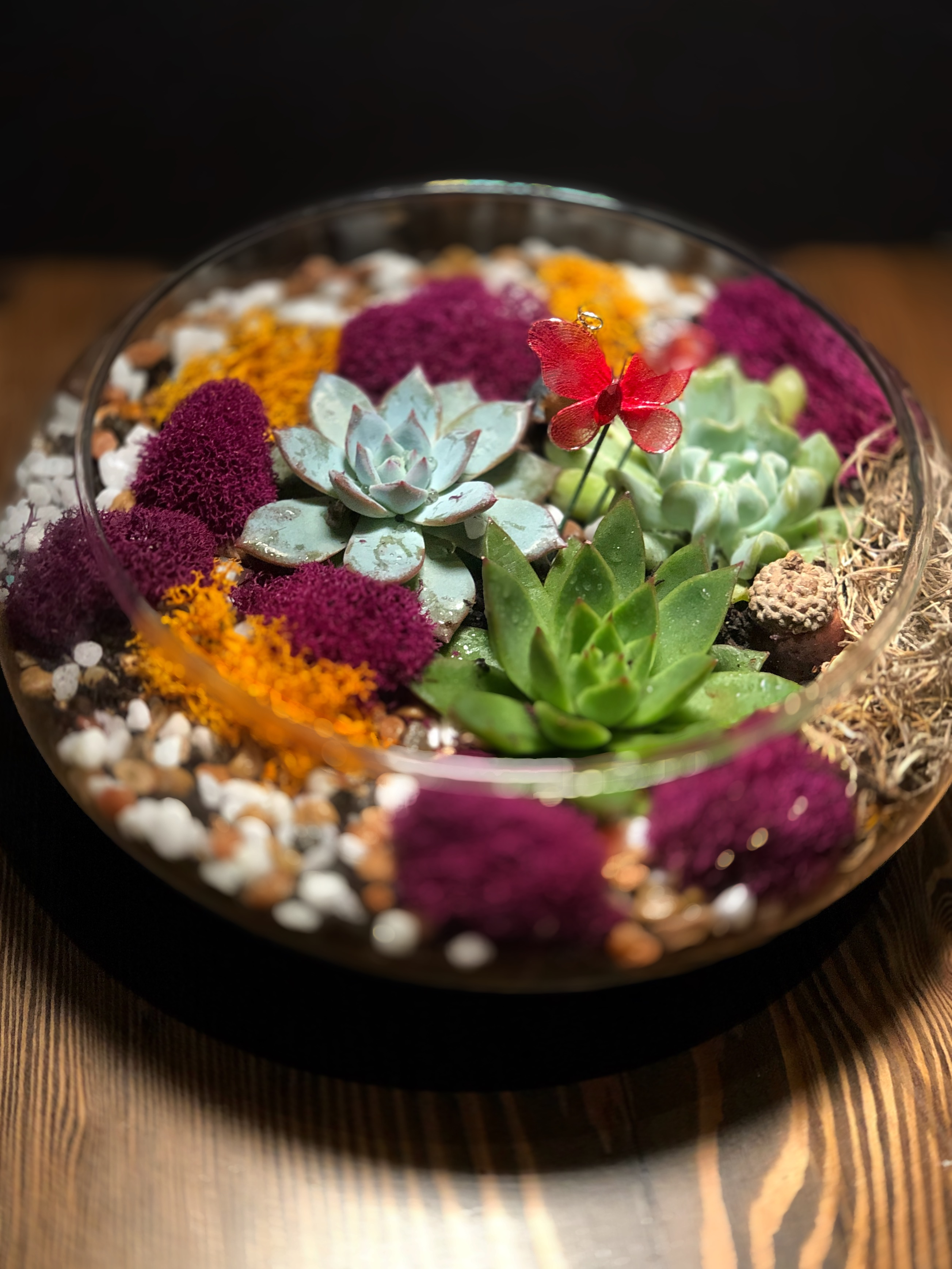 Succulent Terrarium In Glass Lily Bowl At Grill 41 Downtown