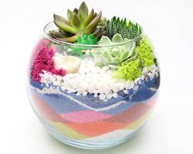 A Succulent Terrarium in Rose Bowl  Sand Art plant nite project by Yaymaker