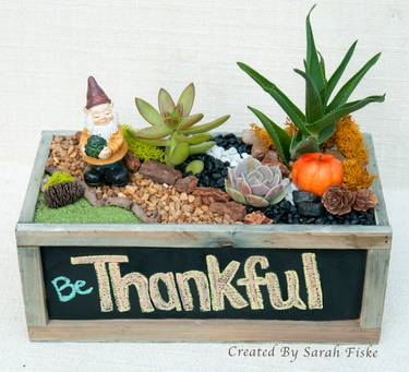 A Be Thankful Gnome Garden plant nite project by Yaymaker