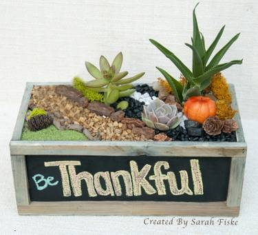 A Be Thankful Chalkboard Planter plant nite project by Yaymaker