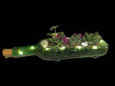 A Wine Bottle with Fairy Lights plant nite project by Yaymaker