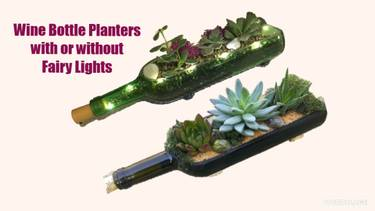 A Succulents in Wine Bottle Planter with or without Fairy Lights plant nite project by Yaymaker