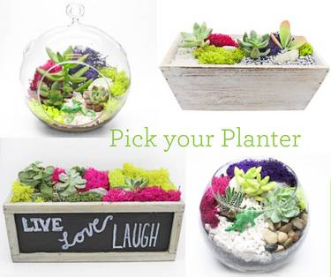 A Pick Your Planter with glass or wood plant nite project by Yaymaker