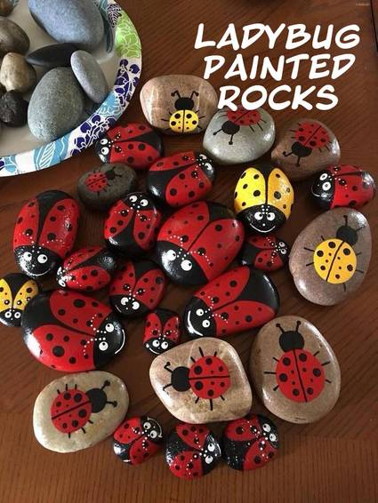 A Crafting with Sammy B  Painted Rocks  Ladybugs experience project by Yaymaker