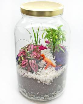 A Tropical Terrarium in Glass Jar plant nite project by Yaymaker
