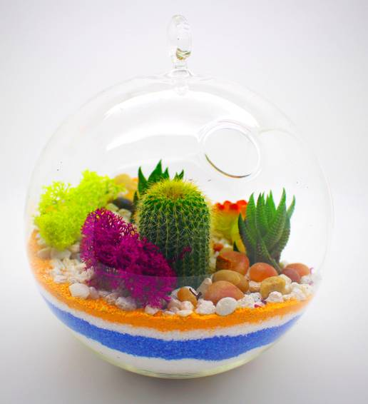 A Succulent Terrarium Sand Art in Hanging GlobeDesign By TeamVivian plant nite project by Yaymaker