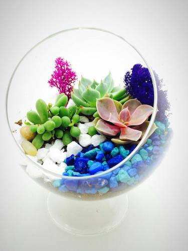A Succulent Terrarium in Standing Globe Blue LandDesign By TeamVivian plant nite project by Yaymaker