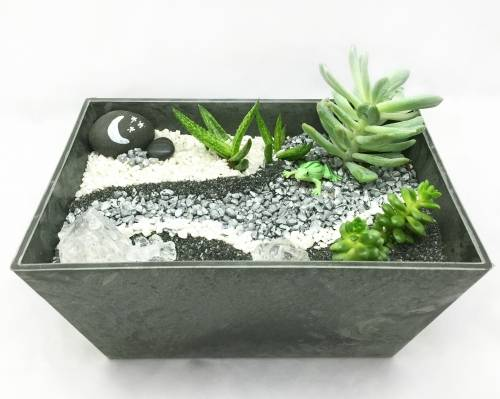 A Succulent Terrarium Modern Grayscale Polypro plant nite project by Yaymaker