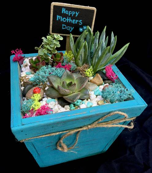A Mothers Day Special  Vintage Teal plant nite project by Yaymaker