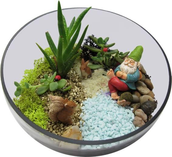 A Succulent Gnomes Friends Terrarium plant nite project by Yaymaker