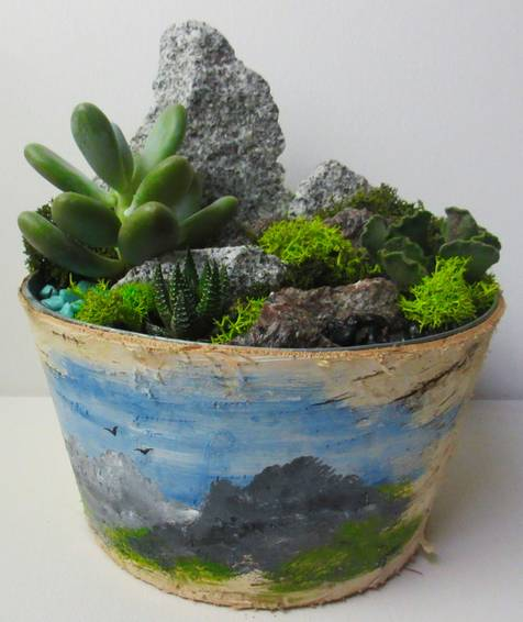 A PAINT amp plant Succulent Terrarium in Birch container  Hills of Granite plant nite project by Yaymaker