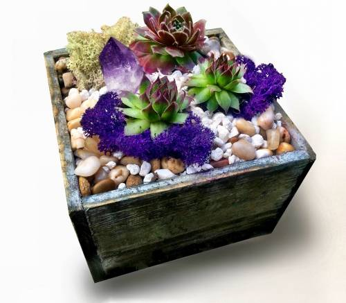 A Distressed Square Wood Succulent Planter Terrarium with Amethyst Crystal plant nite project by Yaymaker