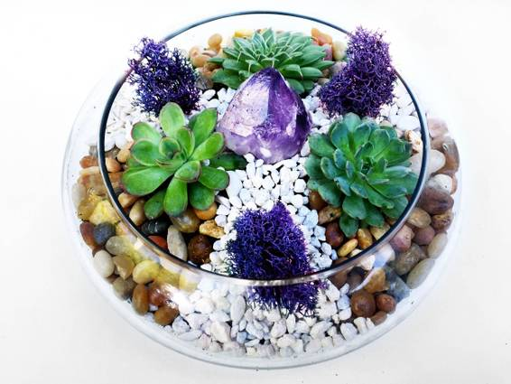 A Glass Lily Bowl Succulent Terrarium WRiver Rocks and Amethyst Crystal plant nite project by Yaymaker