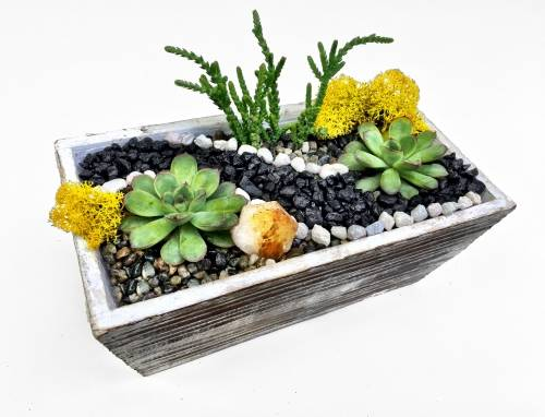A Distressed Wood Succulent Planter Terrarium w Citrine Crystal plant nite project by Yaymaker