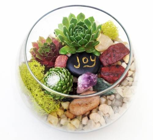 A Glass Rose Bowl Succulent Terrarium W Joy Wish Rock and Amethyst Crystal plant nite project by Yaymaker