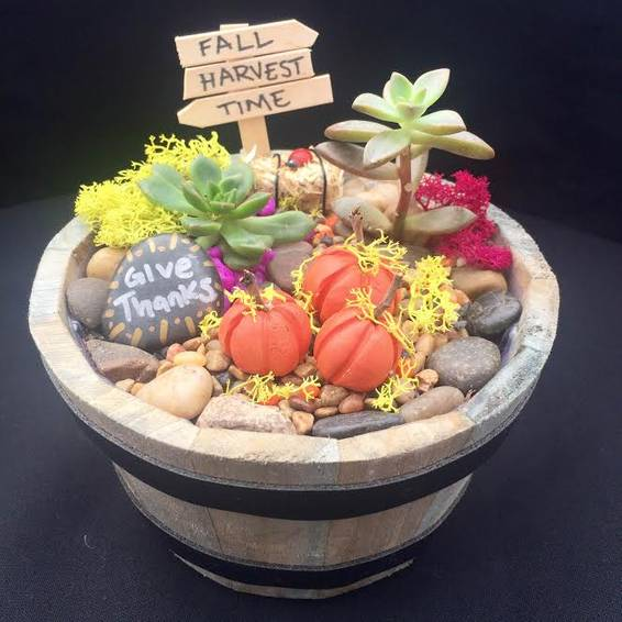 A Fall Harvest Succulent in Wooden Barrel plant nite project by Yaymaker