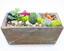 A Private Event Succulent Terrarium in Light Distressed Wood Rectangular plant nite project by Yaymaker