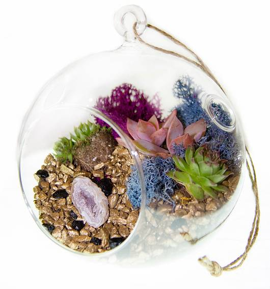 A Succulent Geode Terrarium in Hanging Glass Globe plant nite project by Yaymaker