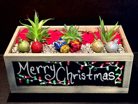 A Merry Christmas Chalkboard Customizable Planter plant nite project by Yaymaker