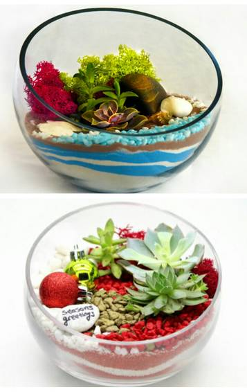 A YOUR CHOICE OF TWO SAND ART PROJECTS  HOLIDAY RED OR BEACH BLUE plant nite project by Yaymaker