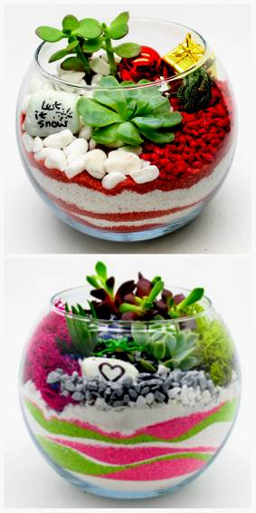 A YOUR CHOICE  CHRISTMAS OR PINK  GREEN GRINCH plant nite project by Yaymaker