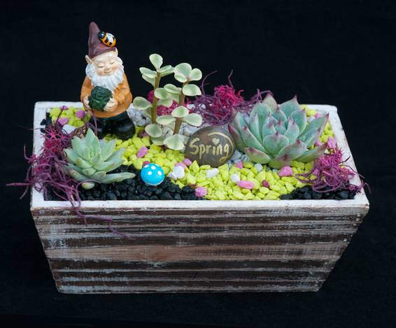 A Gnome Spring Garden plant nite project by Yaymaker