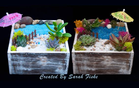 A Pick your beach plant nite project by Yaymaker