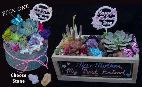 A Mothers Day  You pick plant nite project by Yaymaker