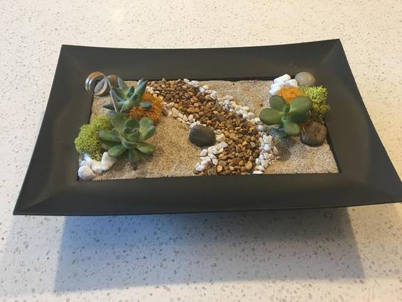 A Succulent Zen Path plant nite project by Yaymaker
