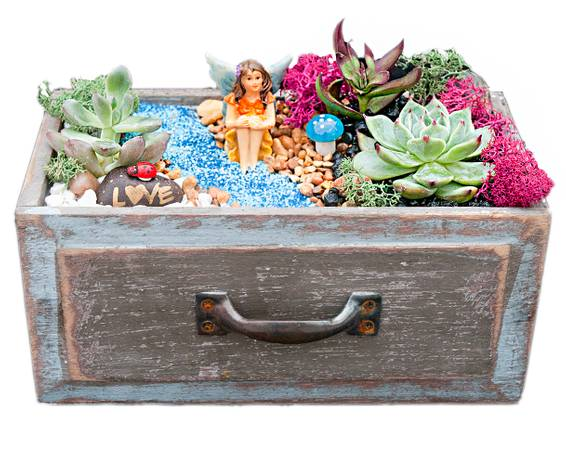 A Fairy in Wooden Drawer plant nite project by Yaymaker