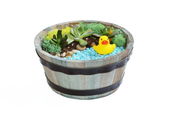 A Duck Pond in Wooden Barrel plant nite project by Yaymaker