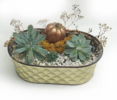 A Golden Autumn Pumpkin Planter plant nite project by Yaymaker