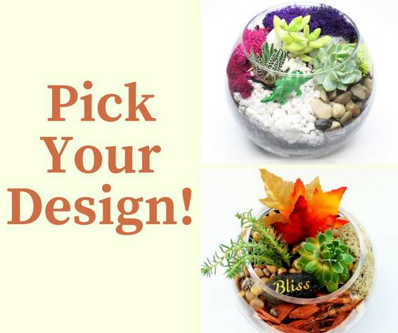 A Fall Rose Bowl  Pick Your Design plant nite project by Yaymaker
