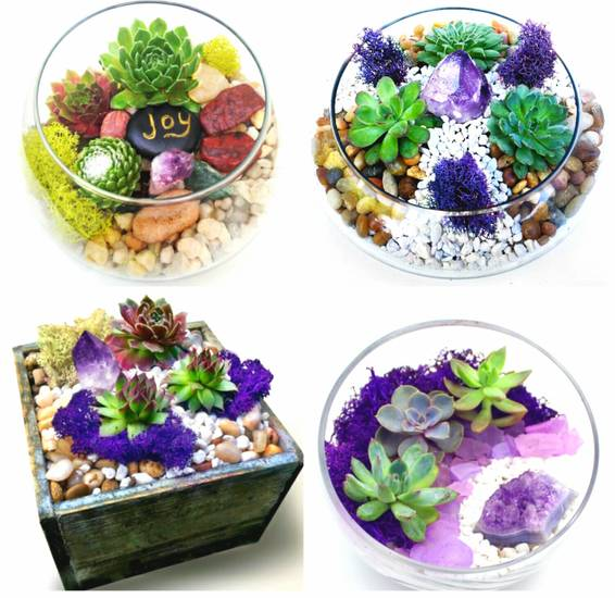 A Succulent Garden or Terrarium with Amethyst Crystal You Pick the Design plant nite project by Yaymaker