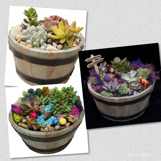 A Whiskey Barrel Terrarium plant nite project by Yaymaker