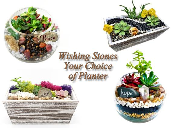 A Wishing Stones   Crystals You Choose Wooden or Glass Container plant nite project by Yaymaker