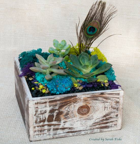 A Peacock in Distressed Wood plant nite project by Yaymaker