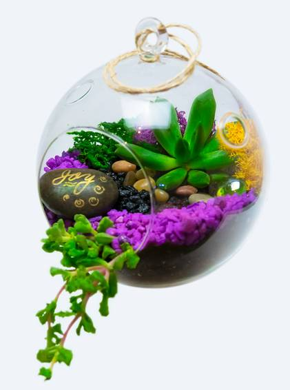 A Hanging Glass Globe Succulent Terrarium with Wish Stone and Ocean Glass plant nite project by Yaymaker