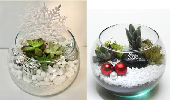 A WinterHoliday Rose Bowl plant nite project by Yaymaker