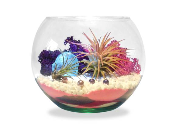 A Under the Sea  Air Plant Sand Art Rose Bowl plant nite project by Yaymaker