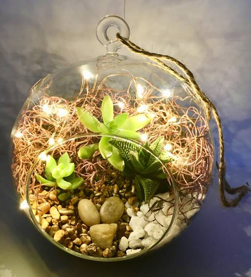 A Hanging Globe Succulent Terrarium w Fairy Lights plant nite project by Yaymaker