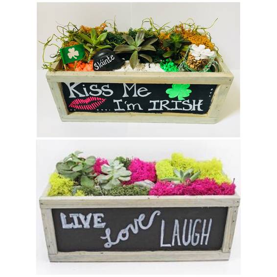 A Chalkboard Succulent TerrariumChoose your Design plant nite project by Yaymaker