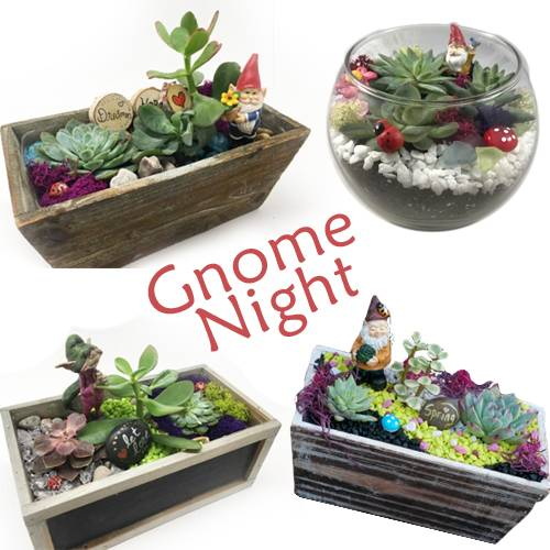 A Gnome Night  Pick Your Planter and Your Gnome plant nite project by Yaymaker