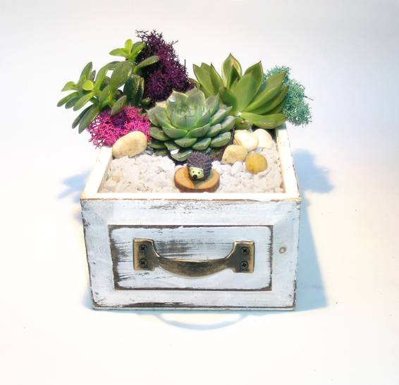A Hedgehog Wooden Drawer plant nite project by Yaymaker