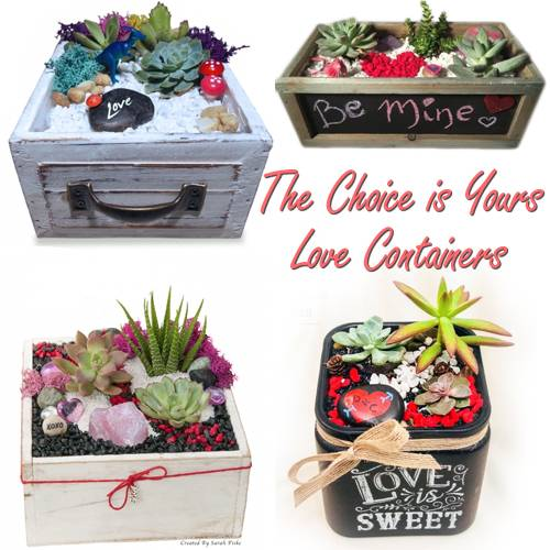 A The Choice is Yours Love Containers plant nite project by Yaymaker