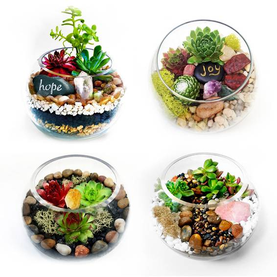 A Succulent Terrarium in Rose Bowl Choose Your Stone plant nite project by Yaymaker