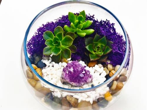 A Natural Stones with Amethyst in Rose Bowl plant nite project by Yaymaker